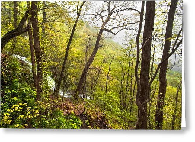 Misty Mountain Greeting Card by Debra and Dave Vanderlaan