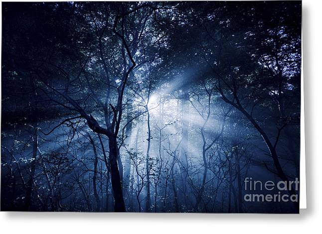 Misty Rays In A Dark Forest, Liselund Greeting Card by Evgeny Kuklev