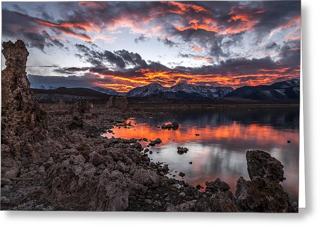Mono Lake Sunset Greeting Card by Cat Connor