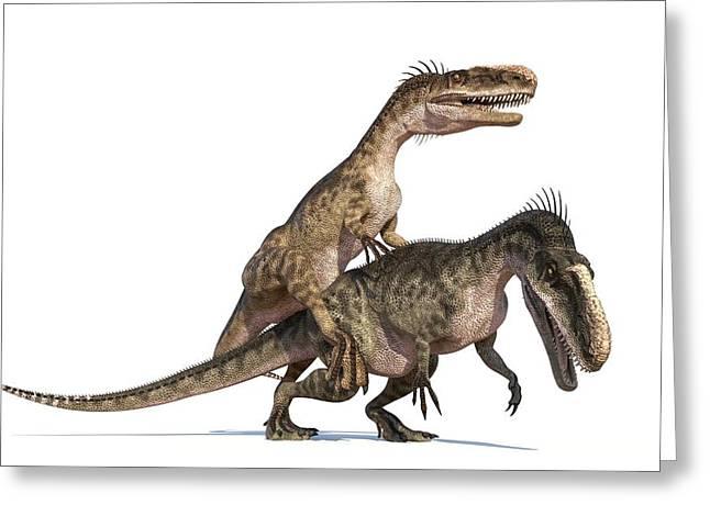 Monolophosaurus Dinosaurs Mating Greeting Card by Roger Harris