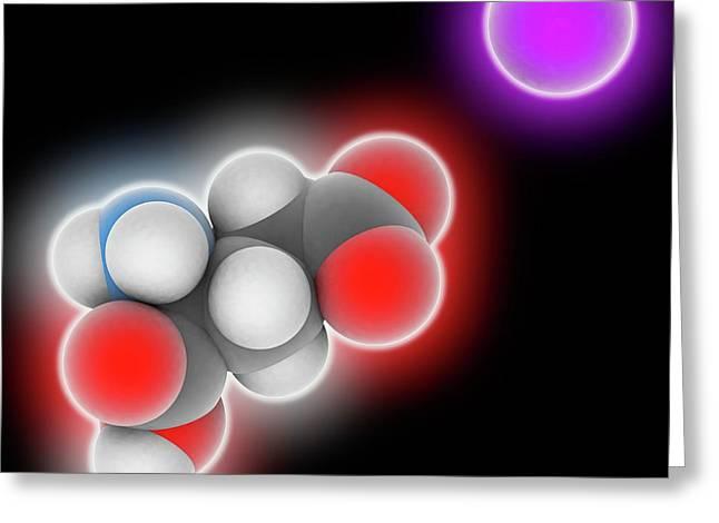 Monosodium Glutamate Molecule Greeting Card by Laguna Design