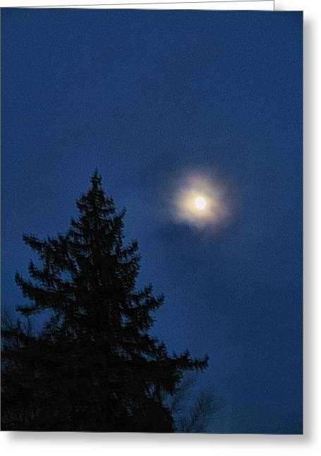 Moon Beyond The Spruce Greeting Card