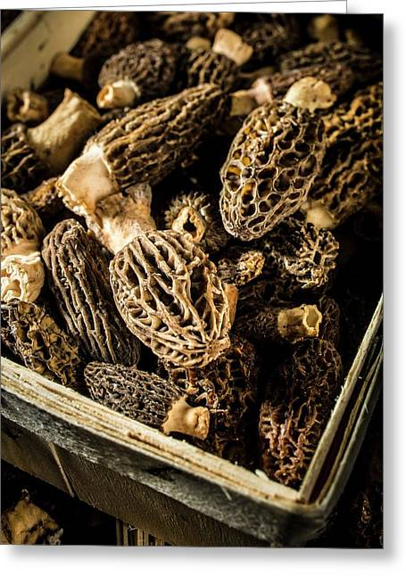 Morel Mushrooms Greeting Card by Aberration Films Ltd