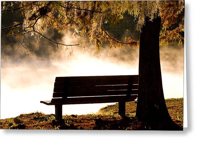 Morning Mist At The Spring Greeting Card