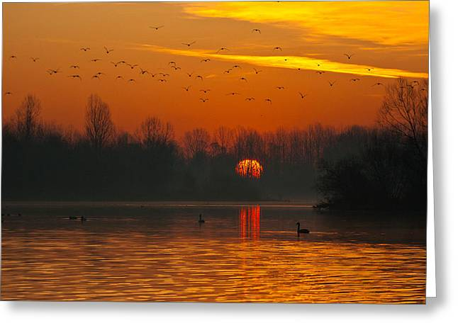 Morning Over River Greeting Card