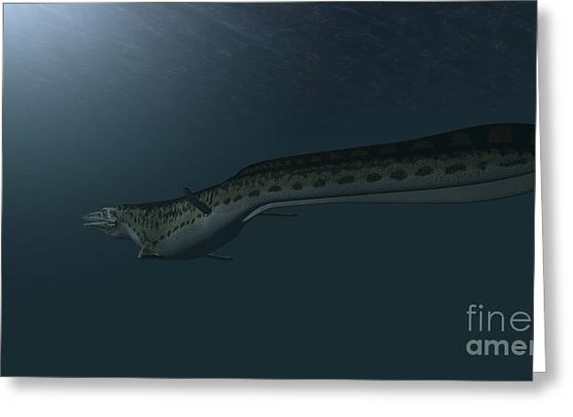 Mosasaur Swimming In Prehistoric Waters Greeting Card by Kostyantyn Ivanyshen