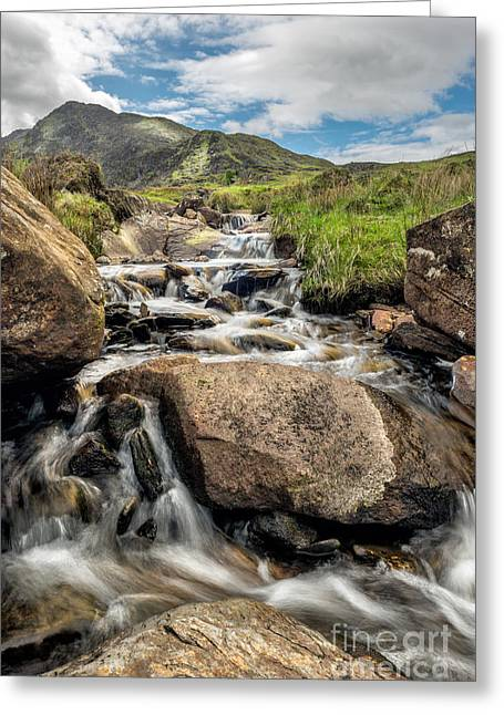 Mountain Stream Greeting Card by Adrian Evans