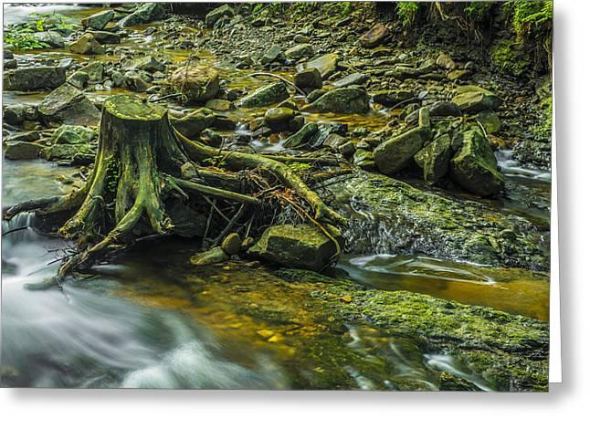 Greeting Card featuring the photograph Mountain Stream by Jaroslaw Grudzinski