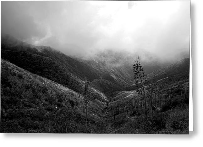 Mountain Valley Black And White Greeting Card by Gilbert Artiaga