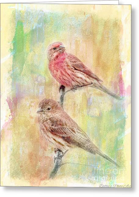Mr And Mrs House Finch - Digital Paint Greeting Card by Debbie Portwood