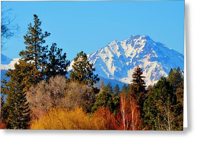 Mt Bachelor 21620 Greeting Card