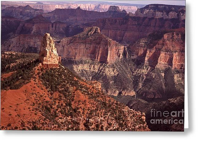 Mt Hayden  Grand Canyon Greeting Card by Liz Leyden