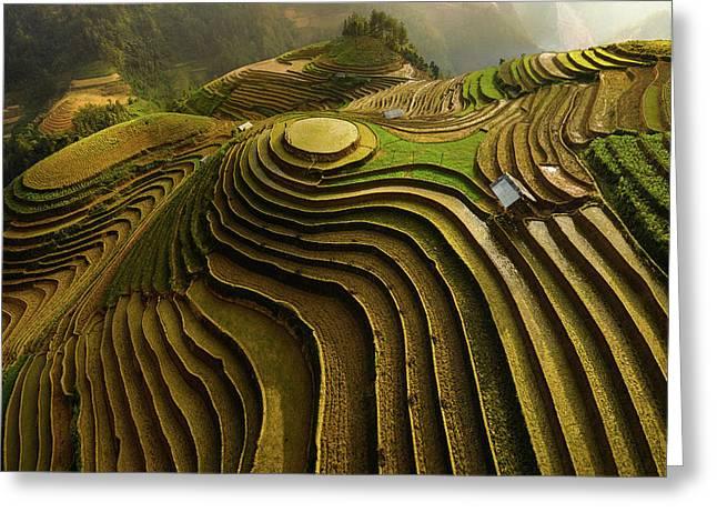Mu Cang Chai - Vietnam Greeting Card