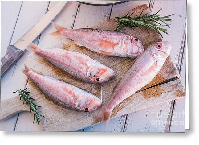 Mullet Fish And Rosemary  Greeting Card