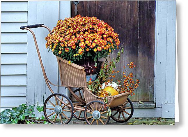 Mums In A Buggy Greeting Card by Janice Drew