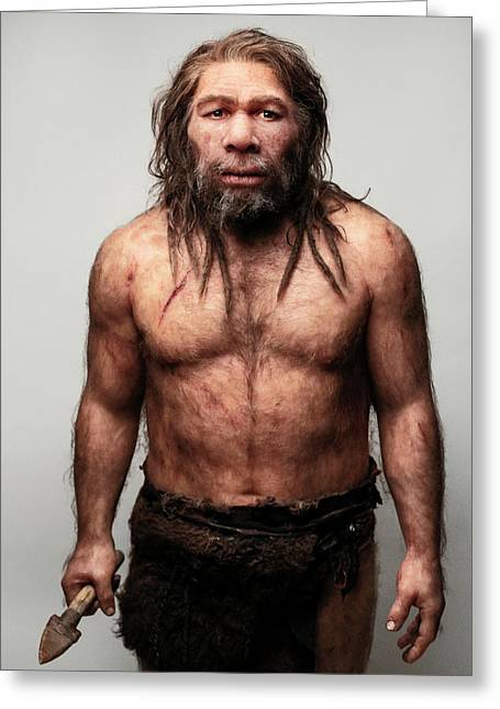 Neanderthal Model Greeting Card by S. Entressangle/e. Daynes
