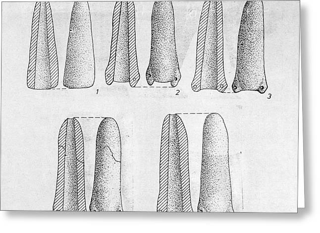 Neolithic Phallus Figures Greeting Card