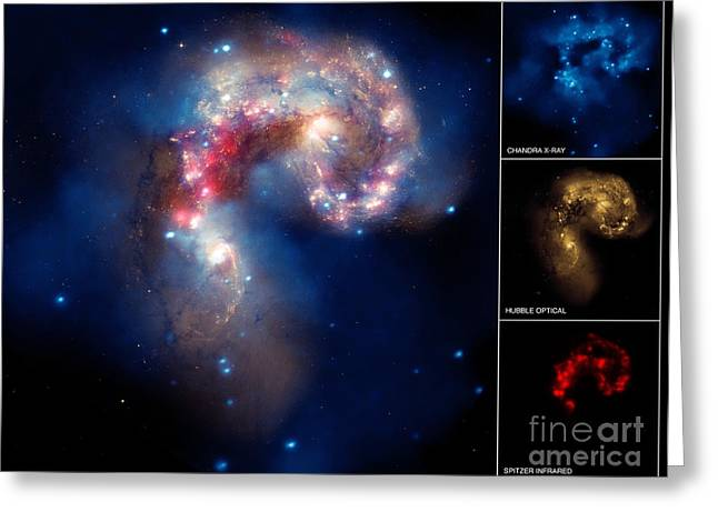 Ngc 4038ngc 4039, Antennae Galaxies Greeting Card by Science Source