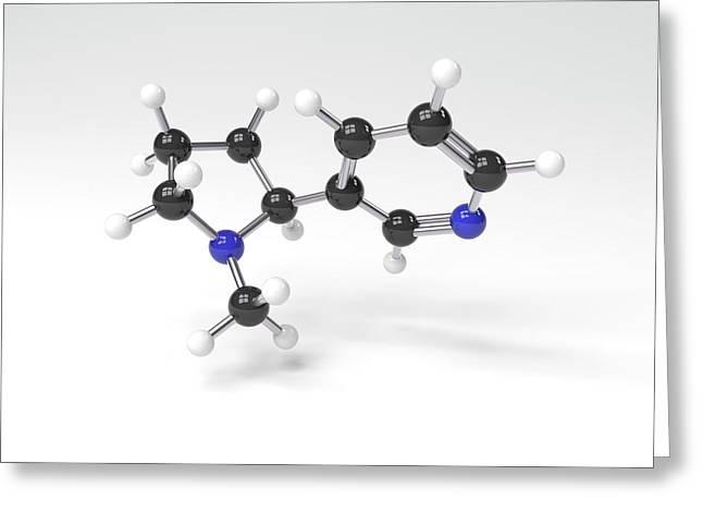 Nicotine Molecule Greeting Card by Indigo Molecular Images