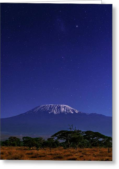 Night Sky Over Mount Kilimanjaro Greeting Card