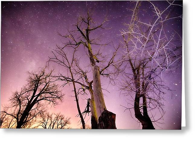 1 Night To Day Greeting Card by James BO  Insogna