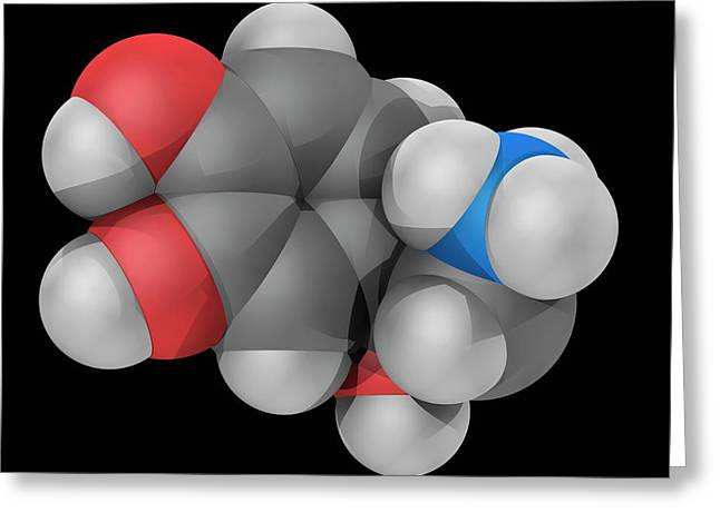 Norepinephrine Molecule Greeting Card by Laguna Design/science Photo Library