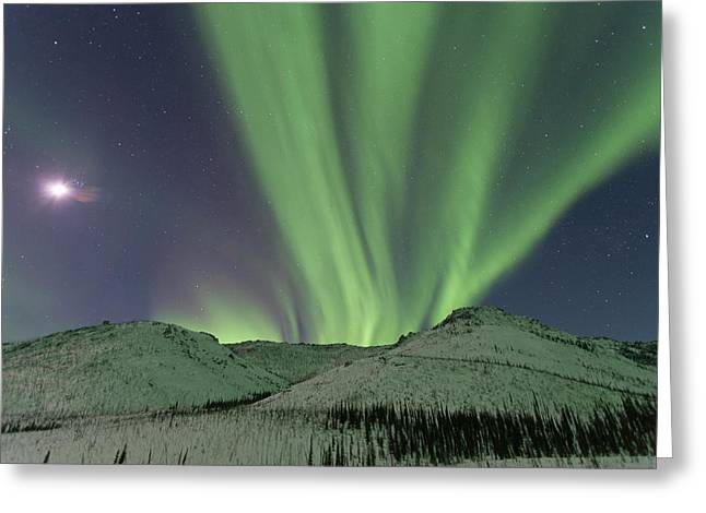 Northern Lights Shimmer Over The White Greeting Card by Hugh Rose