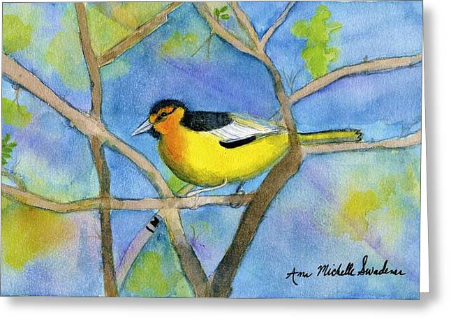 Northern Oriole Greeting Card by Ann Michelle Swadener