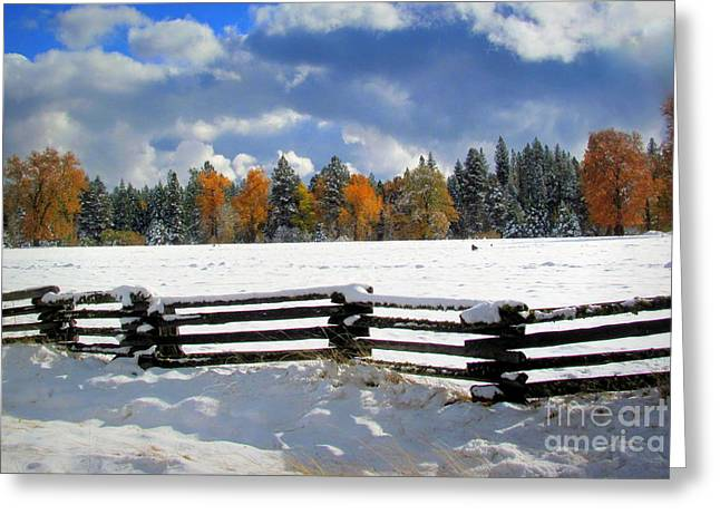 November Greeting Card by Irina Hays