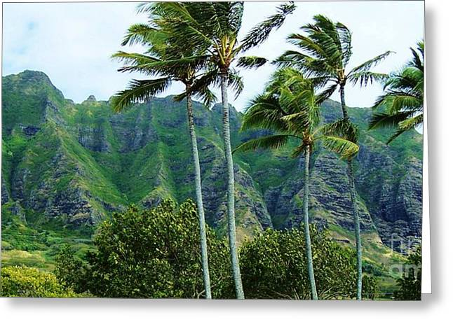 Oahu Mountains Greeting Card