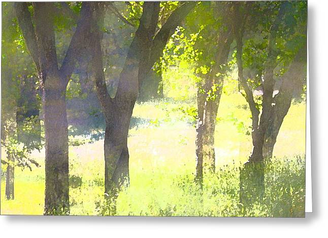 Oaks 25 Greeting Card by Pamela Cooper