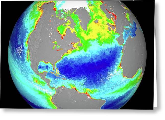 Ocean Chlorophyll Concentrations Greeting Card by Nasa/suomi Npp/norman Kuring