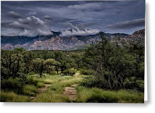 Greeting Card featuring the photograph Odyssey Into Clouds Oil by Mark Myhaver