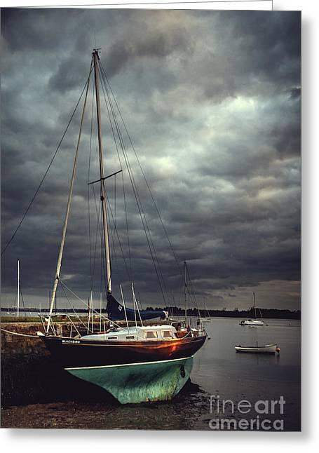 Off The Sea Greeting Card by Svetlana Sewell
