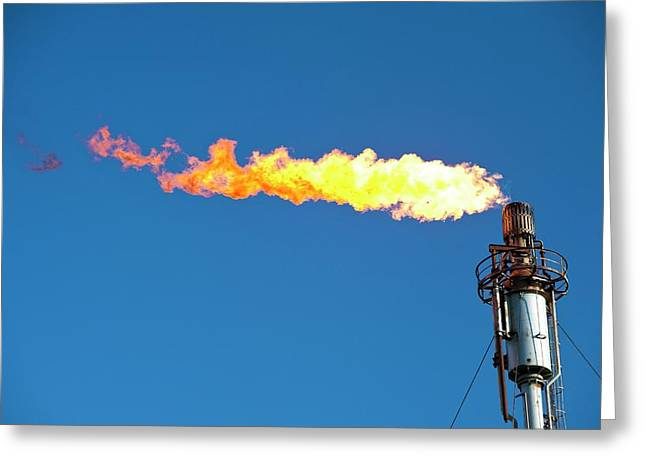 Oil Terminal Flaring Off Gas Greeting Card