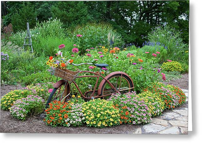 Old Bicycle With Flower Basket Greeting Card by Panoramic Images