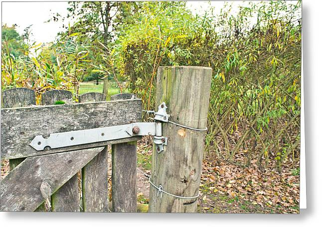 Old Gate Greeting Card by Tom Gowanlock