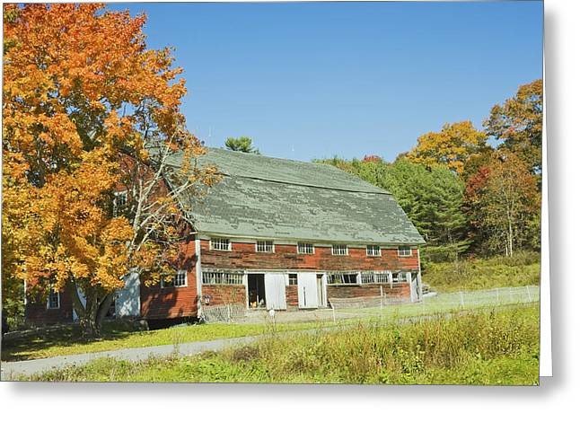 Old Red Barn In Maine Greeting Card