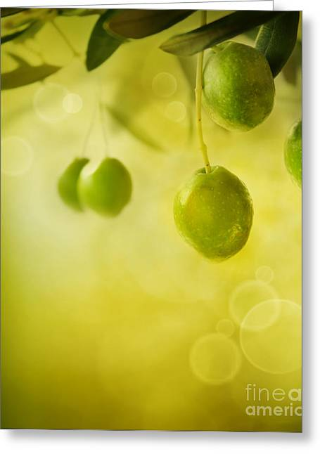 Olives Design Background Greeting Card by Mythja  Photography