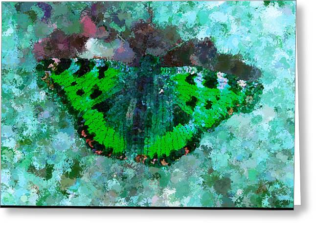On The Rocks Teal Greeting Card by Holley Jacobs