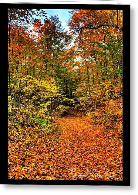 Greeting Card featuring the photograph Orange Path by Michaela Preston