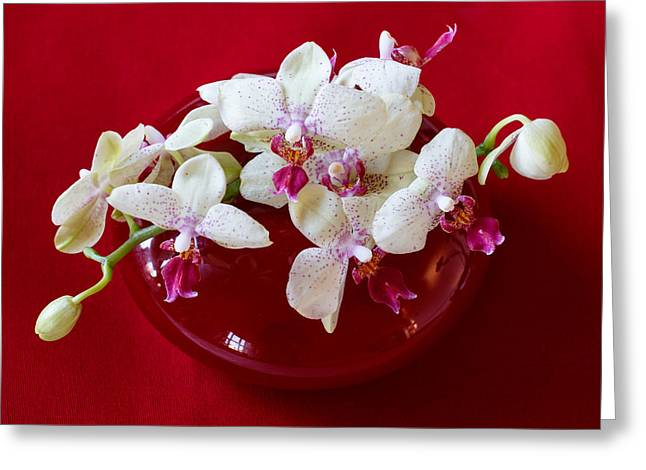 Orchid Center Piece Greeting Card by Paul Indigo