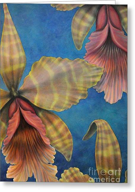 Orchids Greeting Card by J Barth