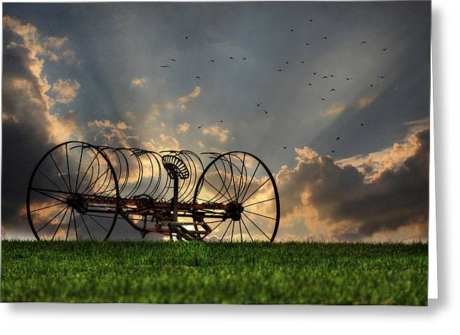 Out To Pasture Greeting Card by Lori Deiter