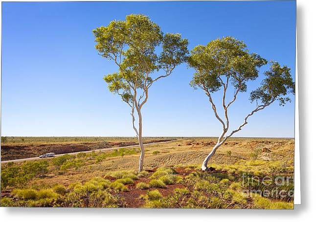 Outback Australia Ghost Gums Greeting Card