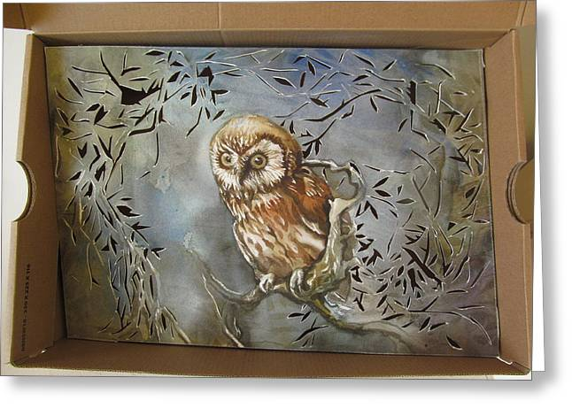 Owl In A Shoe Box Greeting Card