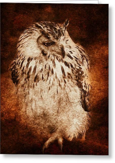 Owl Greeting Card by Svetlana Sewell
