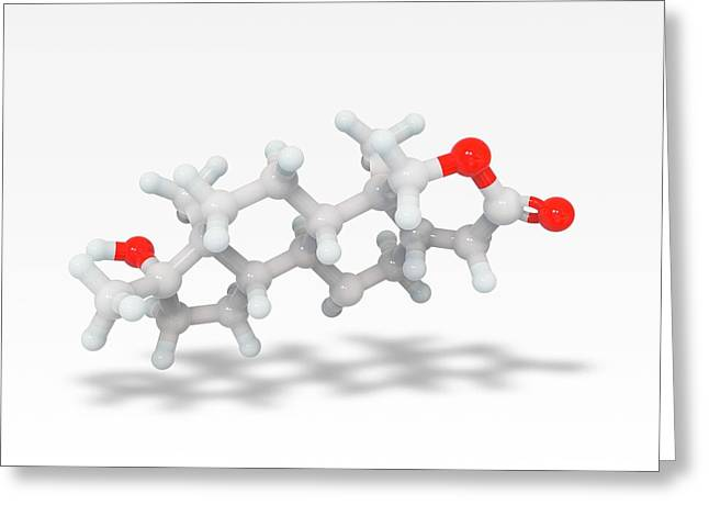 Oxandrolone Anabolic Steroid Molecule Greeting Card by Ramon Andrade 3dciencia