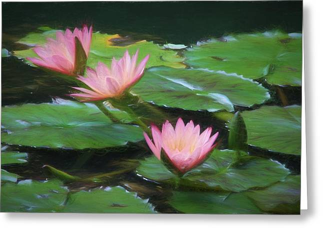 Painted Lilies Greeting Card