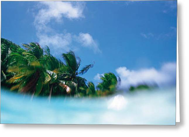 Palau Island Greeting Card by Panoramic Images
